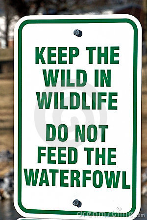 Free Park Sign - Do Not Feed Stock Photos - 7812273