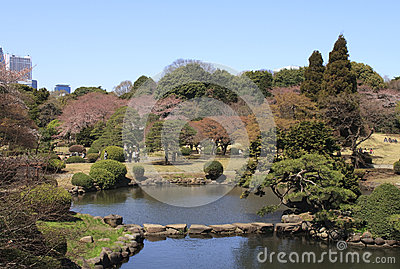 Park in Tokyo during blossom time Editorial Photo