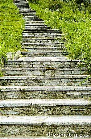 Free Park Upstairs Royalty Free Stock Photos - 15104388
