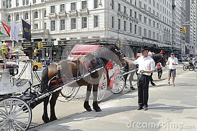 Parked horse carriage by Central Park Editorial Photo