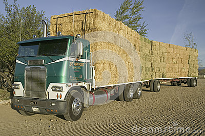 Parked truck loaded with neatly stacked hay bales Editorial Stock Photo