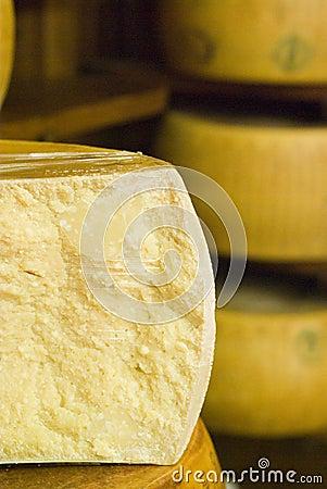 Free Parmesan Royalty Free Stock Photography - 2192557