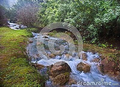 Parod River Israel