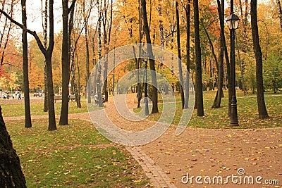 Parque de la reconstrucción en la Moscú