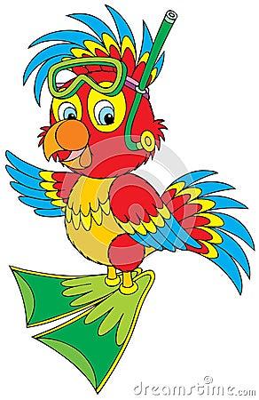 Parrot Diver