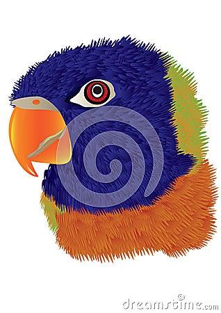 Parrot Head_eps