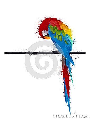 Parrot parakeet, graffiti