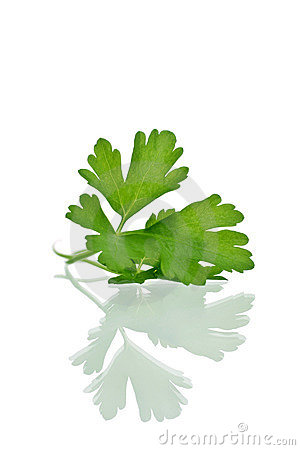 Free Parsley Royalty Free Stock Images - 1903539