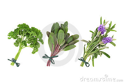 Parsley, Sage And Lavender Herbs Royalty Free Stock Photo - Image: 18824455