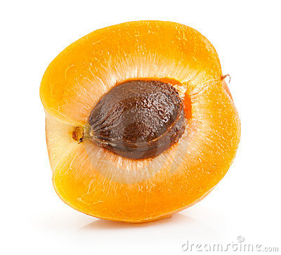 Part of the fruits of apricot
