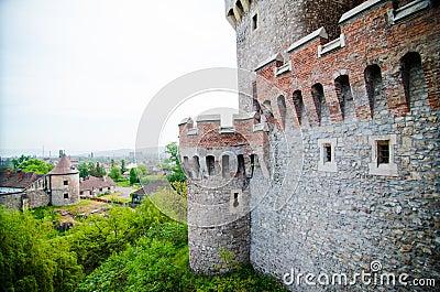Part of  the Huniazi Castle