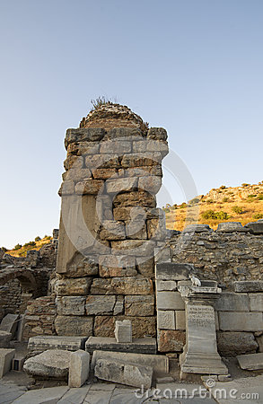 Part of the ruins of Ephesus and the cat - a local resident of the ancient city.