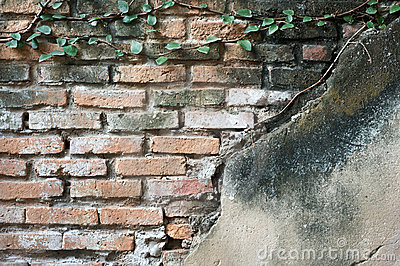 Partially exposed brickwork with plaster and creep
