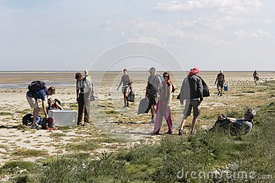 Participants of a tour of Nature monuments clean up Griend clean waste Editorial Stock Photo