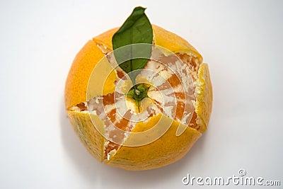 Partly Peeled mandarin