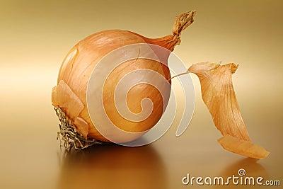 Partly peeled onion
