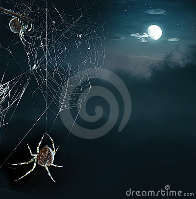 Free Party Spiders In Halloween Night Royalty Free Stock Images - 21535499