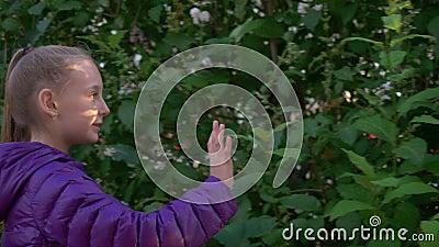 Paseo lindo de la muchacha a lo largo de arbustos del flor del árbol de la lila almacen de video