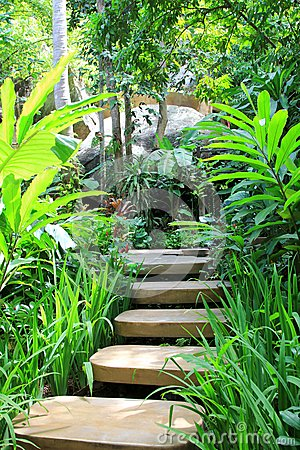 Pasos concretos en el jardín