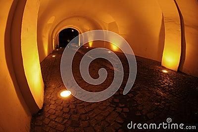 Passage vaulted