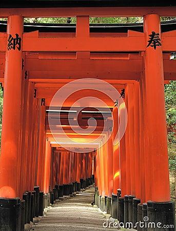 A passageway of Torii Gates