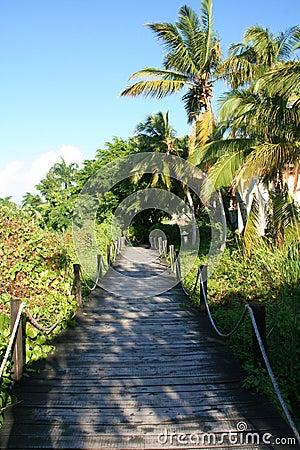 Passaggio pedonale di legno