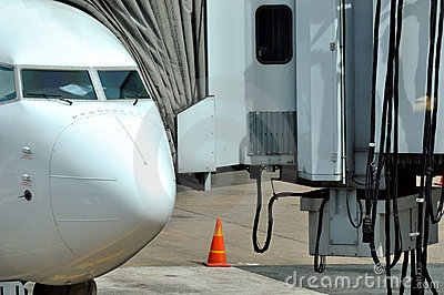 Passenger transport equipment and plane