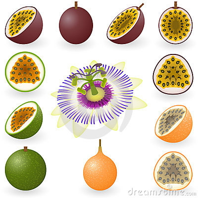 Passiflora commestibile