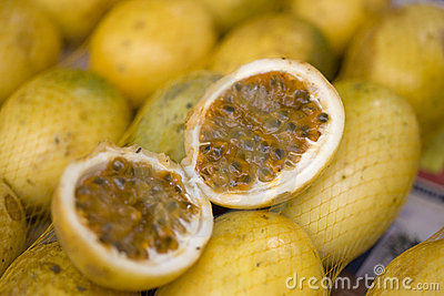 PASSION FRUIT 01