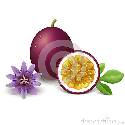 Free Passion Fruit. Vector Illustration. Royalty Free Stock Photo - 38219015