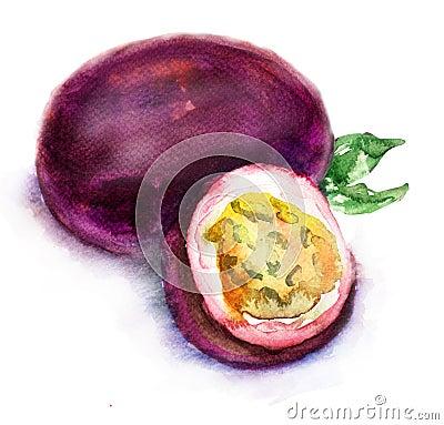 Passionfrukt