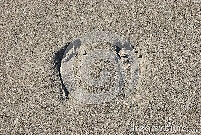 Duas pegadas na areia