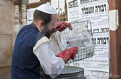 Passover preparation Editorial Stock Image