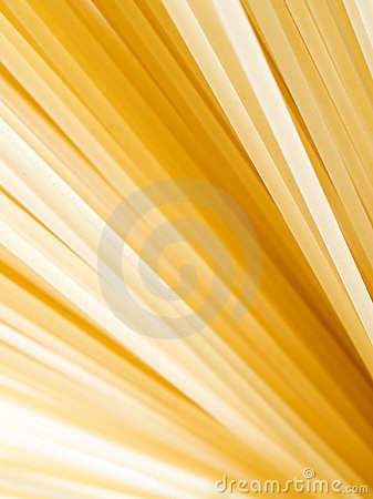 Pasta closeup background.
