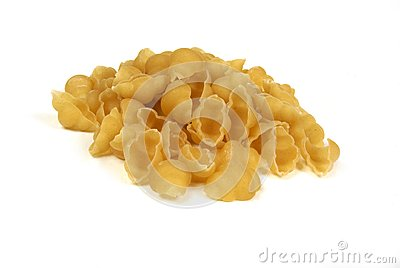 Pasta shells on a white background