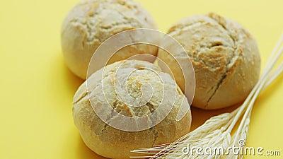 Pastas de trigo filme