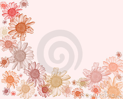 Pastel daisy edging/background