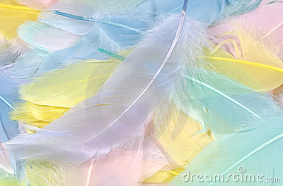 Pastel Feathers 2