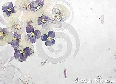 Pastel flowers background