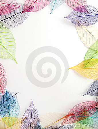 Pastel leaves frame on white background
