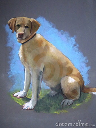 Pastel Painting of Yellow Lab Dog