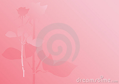Pastel rose background