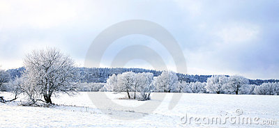 Pasterka village in snow – winter in Poland