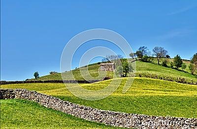 Pastoral scene of lush English meadows