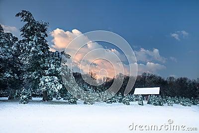 Pastoral snow scene.