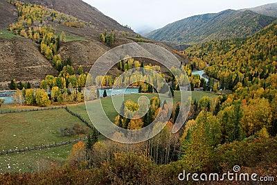 Pasture land with Kanas river
