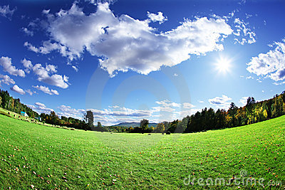 Pasture and sky