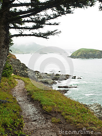 Path along rocky ocean shore with mist