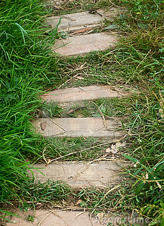 Free Path  And Green Grass Royalty Free Stock Photo - 17479425