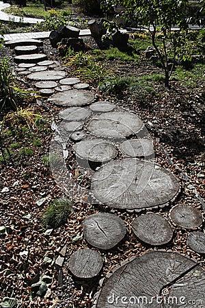 Path in autumn park.